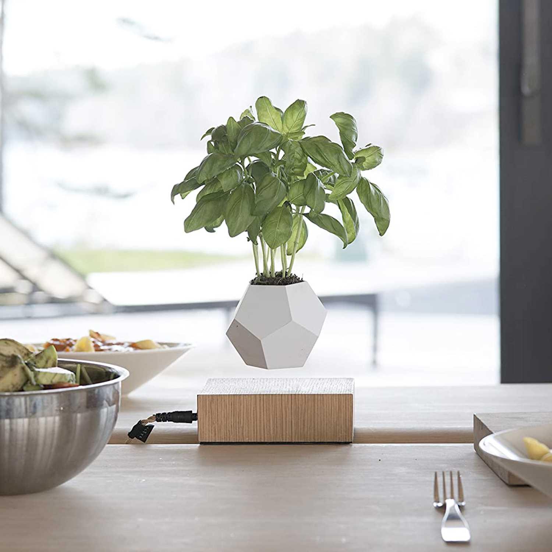 Flyte Lyfe Magnetic Zero Gravity Planter Main Image - Luxury Anniversary Gift Ideas For Him