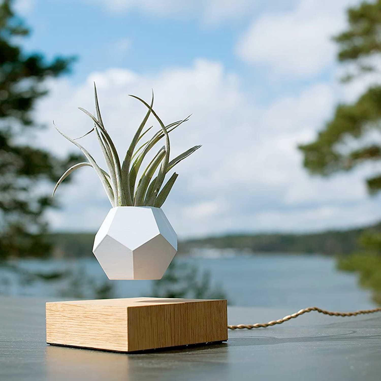 Flyte Lyfe Magnetic Zero Gravity Planter Outside - Luxury Anniversary Gift Ideas For Him