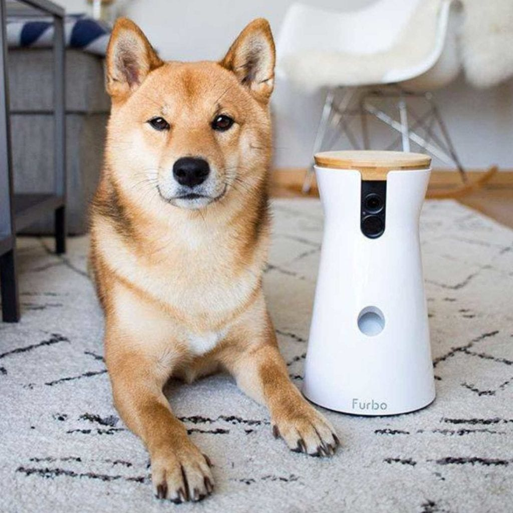 HD WiFi 2-Way Audio Interactive Dog Camera On Rug - Cool Birthday Gifts For Pet Lovers